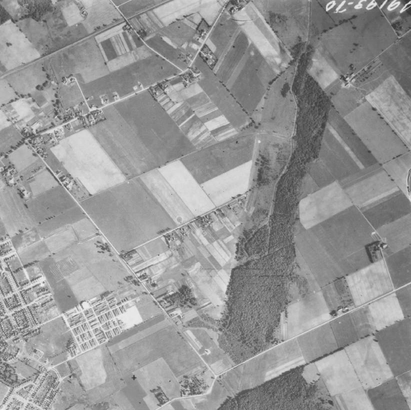 1945aerialstanleypark
