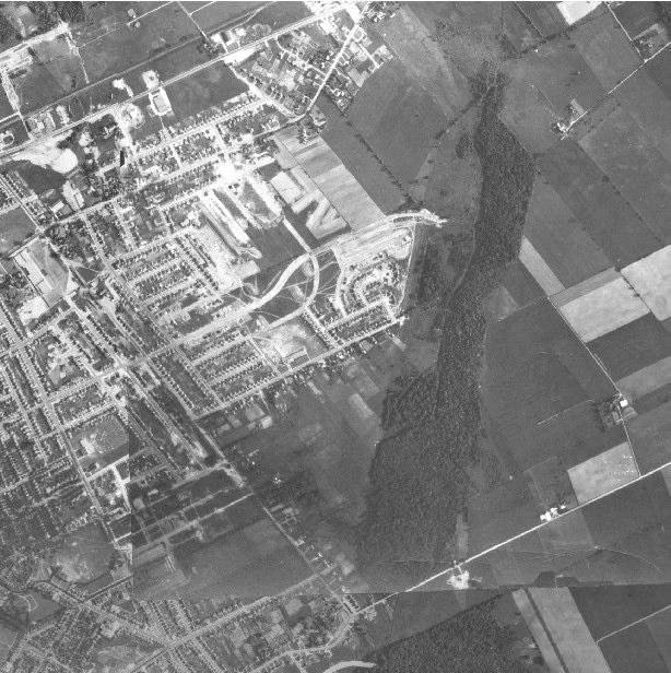 1955aerialstanleypark